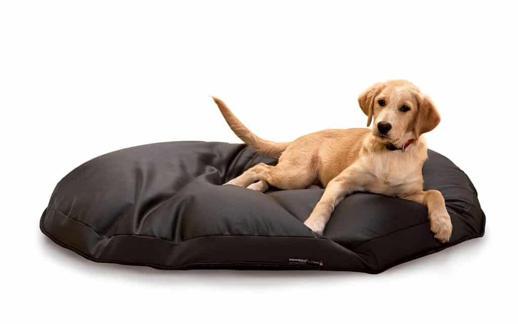 sitzsack expandpouf ring hundesitzsack expandpouf sitzs cke. Black Bedroom Furniture Sets. Home Design Ideas